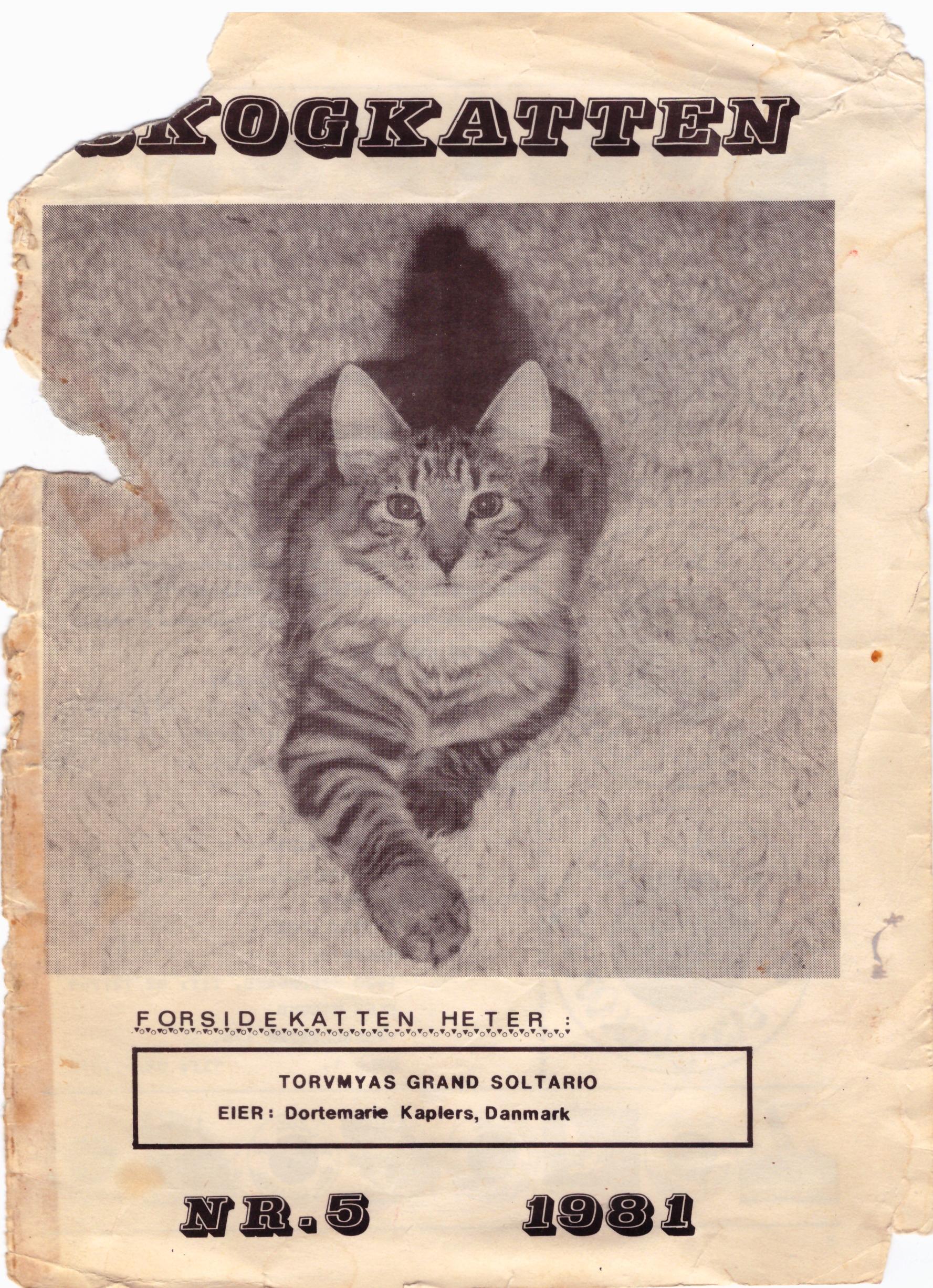Torvemyra's Grand Soltatario, forsidekat 1981