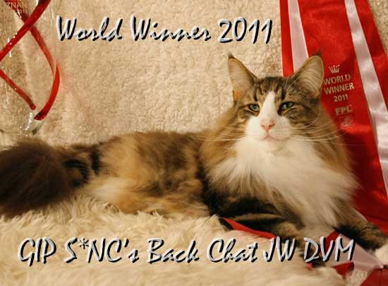 Polen 2011 S*NC's Back Chat NFO n 09 22